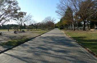 和地山公園