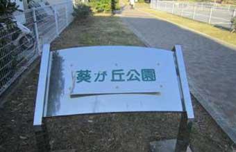 葵が丘公園